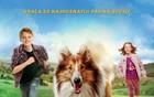 Cineplexx Promenada – repertoar za sredu