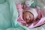MATIČNA KNJIGA ROĐENIH: U Novom Sadu upisane 73 bebe