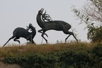 Besplatne turističke šetnje Novim Sadom u subotu 23. februara