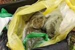 Ugledao policiju pa bacio torbu punu narkotika