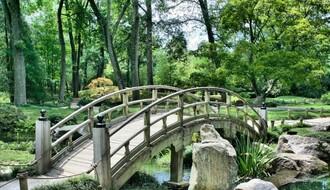 Novi Sad dobija park uređen u japanskom stilu