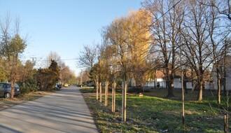 """FOTO: """"Zelenilo"""" završilo tri projekta na sremskoj strani Grada"""