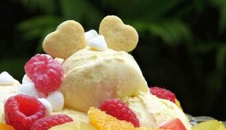 OTKRIVAMO: Postoji li u NS mesto gde sladoled bez problema mogu jesti vegani, dijabetičari i intolerantni na gluten?