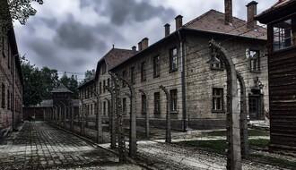"Glavni akter filma ""Enkel"", unuk ozloglašenog naciste, osuđen za prevaru"