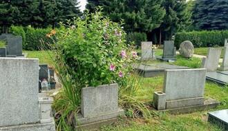 Raspored sahrana i ispraćaja za subotu, 28. avgust