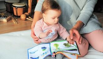 DADILJE U NOVOM SADU: Nema novca koji može nadoknaditi savesno čuvanje dece