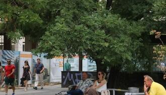 """KAD ZVEZDA UPEČE: Gde su najbolji """"štekovi"""" za hladovinu u gradu (FOTO)"""