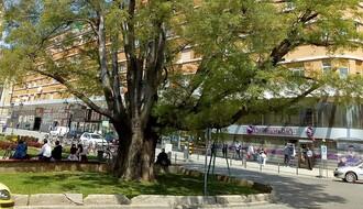 Deo ulice Ilije Ognjanovića od petka zatvoren za saobraćaj