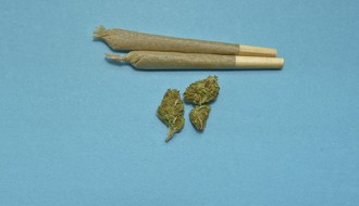 Zbog prodaje i kupovine marihuane krivične prijave maloletnicima iz Novog Sada i Sremskih Karlovaca