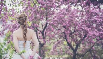 TIODOROVIĆ: Svadbe i maturske proslave odložiti za drugu polovinu juna