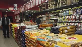 PET ŠOPOVI U NOVOM SADU: Ovo su prodavnice koje odskaču od drugih