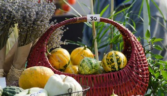 """Četvrta jesenja """"Cvetna pijaca"""" u petak i subotu na platou Spensa"""