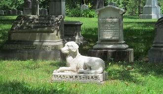 Novi Sad dobija groblje za kućne ljubimce do 2020. godine