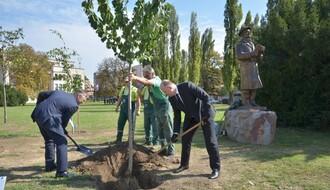 FOTO: Zasađivanjem sadnica u NS obeležena stogodišnjica nezavisnosti Finske