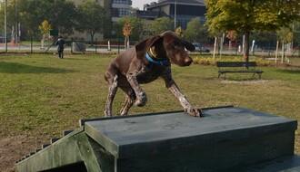 FOTO: Novi Sad dobio prvi park za pse, do kraja godine još dva