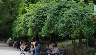 """""""GRADSKO ZELENILO"""": Naplata ulaska u bilo koji novosadski park nije predviđena ni jednim aktom preduzeća"""