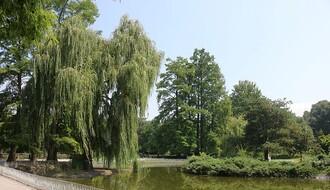 PUTOKAZ ZA NOVI SAD: Upoznajte neverovatan biljni svet Dunavskog parka (FOTO)