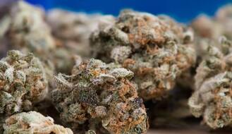 Uhapšen zbog marihuane i amfetamina