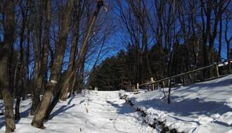 U nedelju pešačenje snežnim stazama Fruške gore