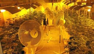 NOVOSADSKA POLICIJA: U borbi protiv narkotika 24 sata dnevno