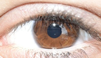 Zašto verujemo osobama sa braon očima?