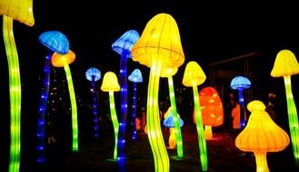 "FOTO: ""Kineski festival svetla"" otvoren u Limanskom parku"