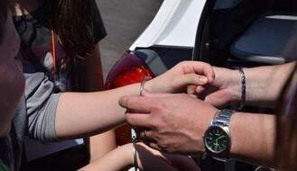 BEOGRAD: Uhapšen zbog pretnji smrću poslanici Mariniki Tepić