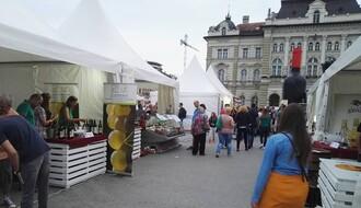 Interfest od večeras do subote u Novom Sadu (FOTO)