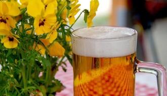 ISTRAŽIVANJE: Nova saznanja o uticaju umerenog pijenja alkohola na organizam