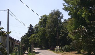 Zelena površina pred uništenjem zbog izgradnje parkinga za KCV