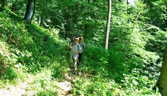 Planinarenje nemarkiranim stazama Fruške gore