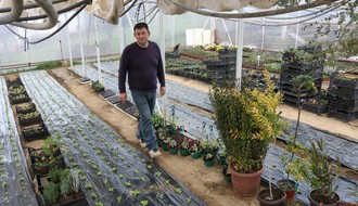 NOVOSAĐANI: Od kinooperatera do uzgajivača cveća