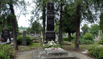 SREMSKA KAMENICA: Sređuje se spomenik čika Jovi Zmaju