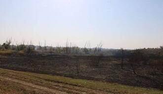 Zelena patrola: Priroda i ljudski životi ugroženi paljenjem biljnih ostataka na njivama