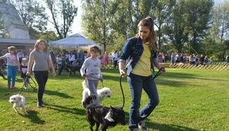 FOTO: Održana četvrta izložba pasa mešanaca na Štrandu