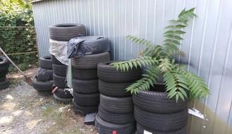 Legla tigrastog komarca pronađena u gumama na auto - placu u NS