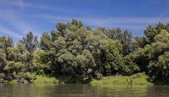 Na obali Dunava kod Čortanovaca pronađeno beživotno telo muškarca