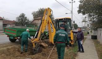 FOTO: Ozelenjavaju se delovi Novog Sada, Petrovaradina i Rumenke