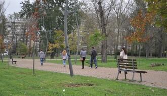 """Radnici """"Gradskog zelenila"""" orezuju suve, bolesne i oštećene grane u Limanskom parku"""