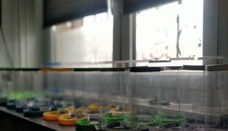 FOTO i VIDEO: Besplatni viziri za zdravstvene radnike u Vojvodini