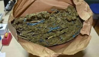 Ilegalni zasad marihuane otkriven pored Dunava u Novom Sadu