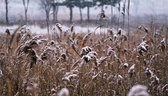 Vreme danas: Oblačno sa snegom, temperatura u NS do 2°C