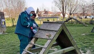 """FOTO: """"Zelenilo"""" uređuje prostore za istrčavanje pasa"""