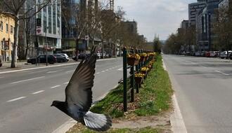 Novi Sad 2020. godine u fotografijama
