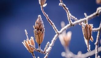 Vreme danas: Ujutro mraz, tokom dana toplije, najviša dnevna u NS oko 13°C