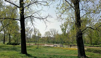Zelena stranka: Ideja o ugostiteljskom objektu u Limanskom parku neprihvatljiva