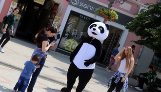 FOTO: Otkud džinovska panda u centru Novog Sada?