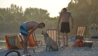 Novosadske plaže na kojima su dobrodošli i vaši ljubimci