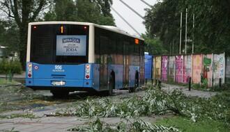 """""""GRADSKO ZELENILO"""": Olujni vetar lomio grane i obarao stabla"""