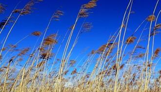 RHMZ upozorava na jak olujni vetar u četvrtak